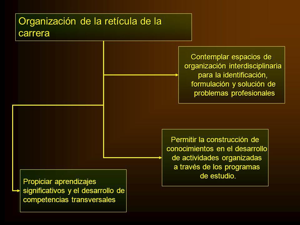 Organización de la retícula de la carrera Contemplar espacios de Contemplar espacios de organización interdisciplinaria organización interdisciplinari