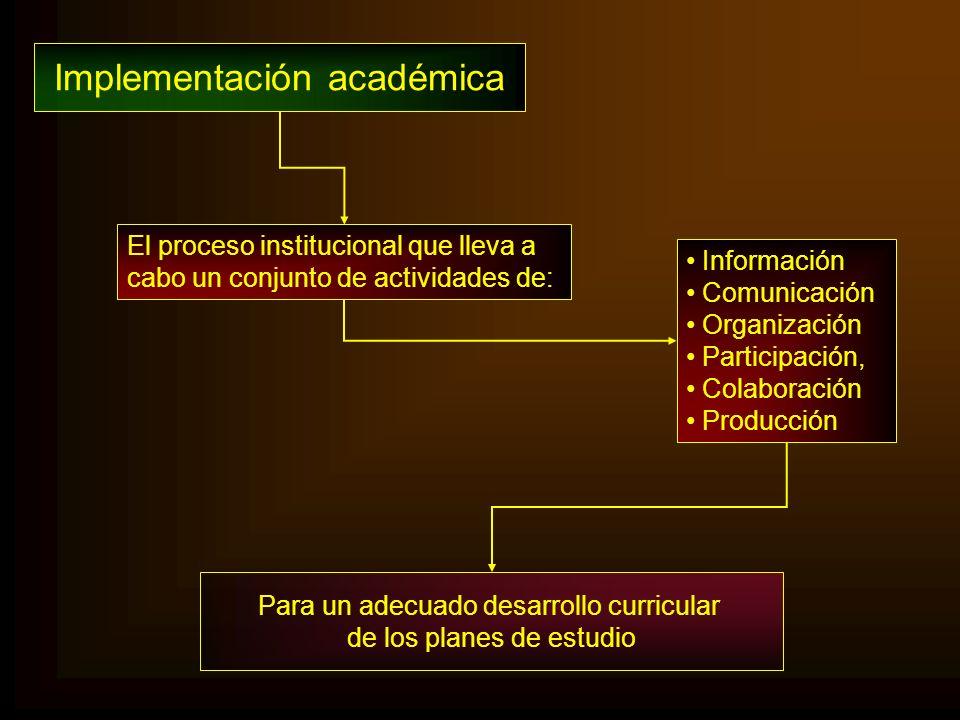 Implementación académica Para un adecuado desarrollo curricular de los planes de estudio El proceso institucional que lleva a cabo un conjunto de acti