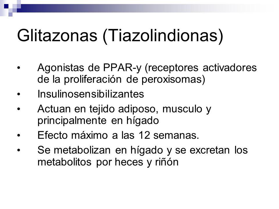Glitazonas (Tiazolindionas) Agonistas de PPAR-y (receptores activadores de la proliferación de peroxisomas) Insulinosensibilizantes Actuan en tejido adiposo, musculo y principalmente en hígado Efecto máximo a las 12 semanas.