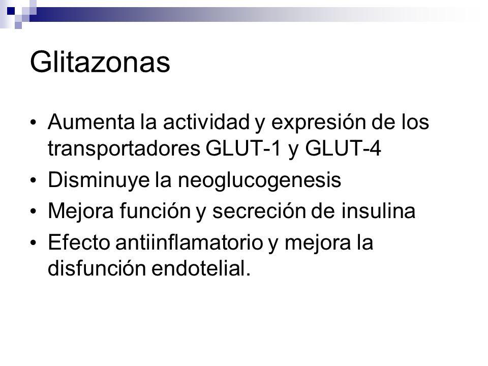 Glitazonas Aumenta la actividad y expresión de los transportadores GLUT-1 y GLUT-4 Disminuye la neoglucogenesis Mejora función y secreción de insulina Efecto antiinflamatorio y mejora la disfunción endotelial.