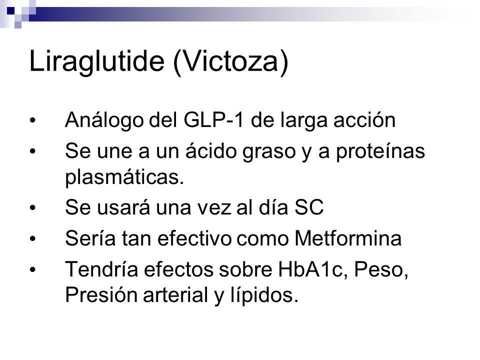 Liraglutide (Victoza) Análogo del GLP-1 de larga acción Se une a un ácido graso y a proteínas plasmáticas.