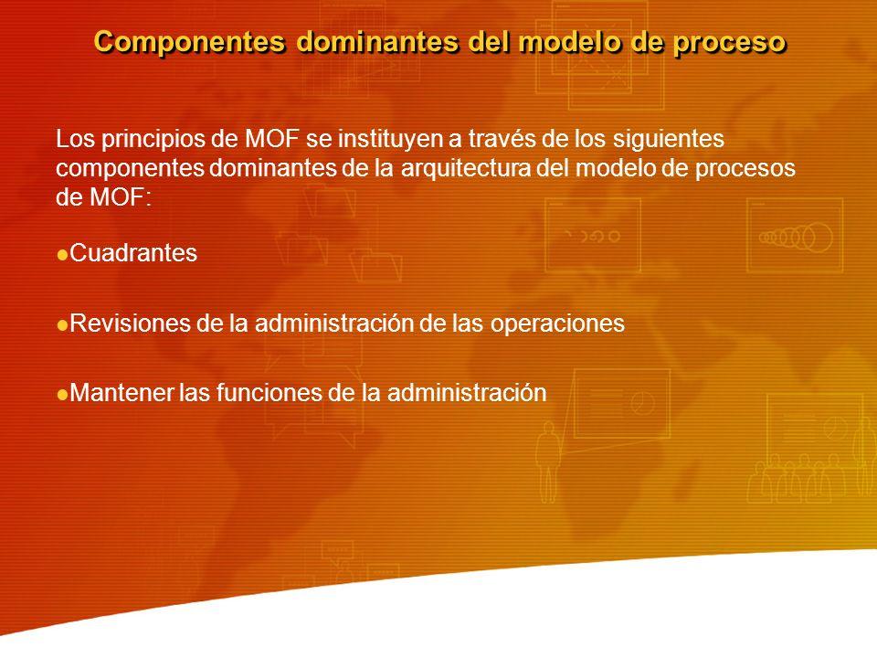 Componentes dominantes del modelo de proceso Los principios de MOF se instituyen a través de los siguientes componentes dominantes de la arquitectura