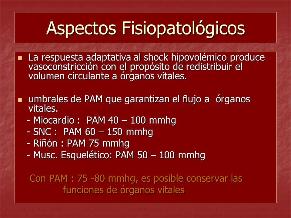 Aspectos Fisiopatológicos La respuesta adaptativa al shock hipovolémico produce vasoconstricción con el propósito de redistribuir el volumen circulant