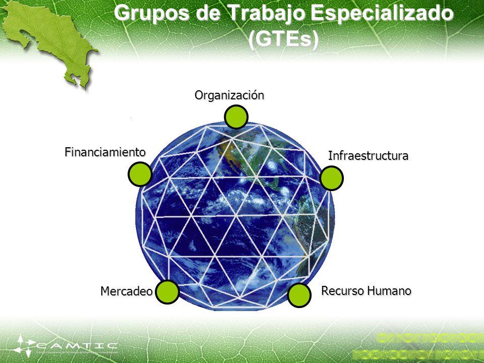 Financiamiento Organización Infraestructura Mercadeo Recurso Humano Grupos de Trabajo Especializado (GTEs)