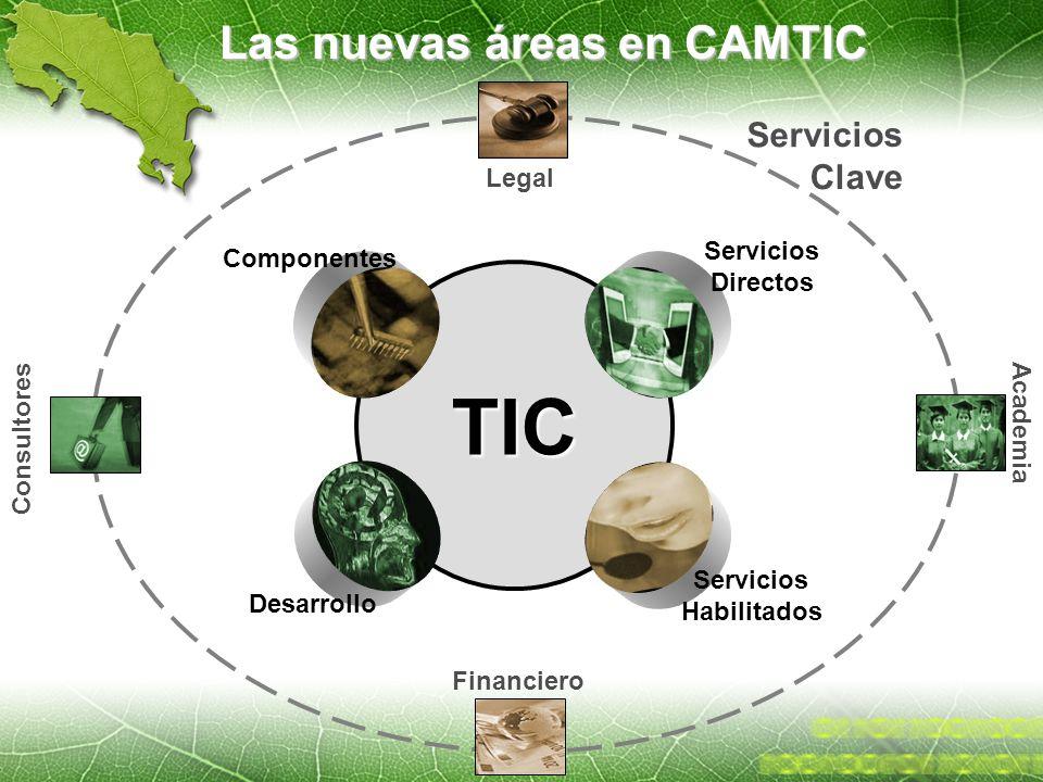 Las nuevas áreas en CAMTIC TIC Servicios Directos Componentes Desarrollo Servicios Habilitados Servicios Clave Consultores Legal Financiero Academia