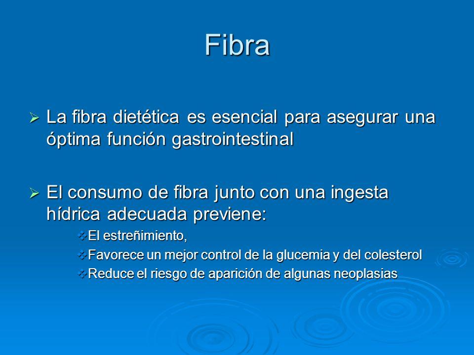 Fibra La fibra dietética es esencial para asegurar una óptima función gastrointestinal La fibra dietética es esencial para asegurar una óptima función