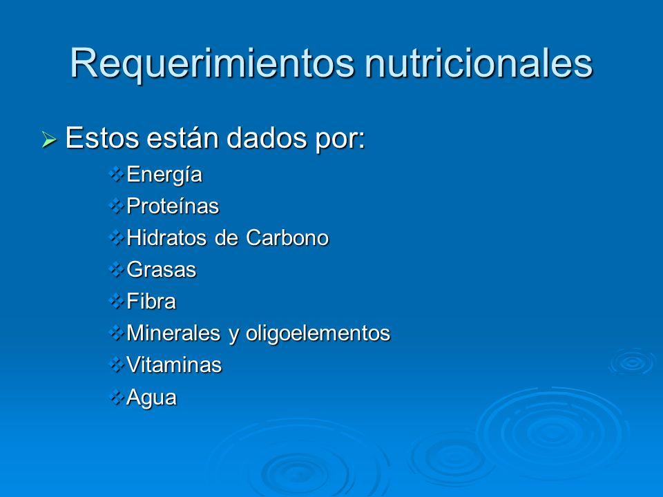 Requerimientos nutricionales Estos están dados por: Estos están dados por: Energía Energía Proteínas Proteínas Hidratos de Carbono Hidratos de Carbono