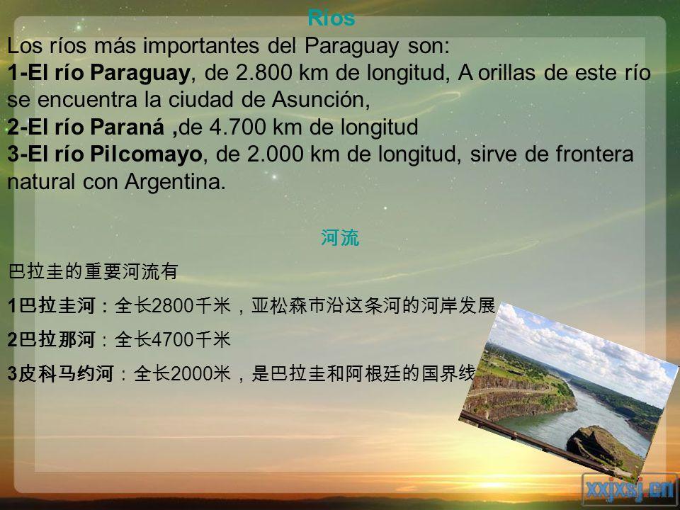 Ríos Los ríos más importantes del Paraguay son: 1-El río Paraguay, de 2.800 km de longitud, A orillas de este río se encuentra la ciudad de Asunción,