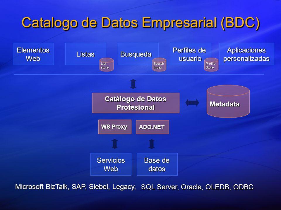 Metadata Catálogo de Datos Profesional Elementos Web ListasBusqueda Perfiles de usuario Aplicaciones personalizadas Base de datos WS Proxy ADO.NET Ser