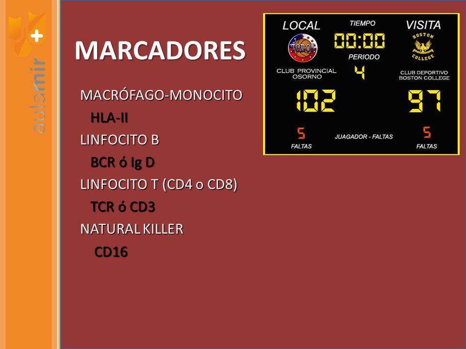 MARCADORES MACRÓFAGO-MONOCITO HLA-II HLA-II LINFOCITO B BCR ó Ig D BCR ó Ig D LINFOCITO T (CD4 o CD8) TCR ó CD3 TCR ó CD3 NATURAL KILLER CD16 CD16