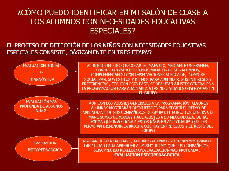 ¿CÓMO PUEDO IDENTIFICAR EN MI SALÓN DE CLASE A LOS ALUMNOS CON NECESIDADES EDUCATIVAS ESPECIALES? EL PROCESO DE DETECCIÓN DE LOS NIÑOS CON NECESIDADES