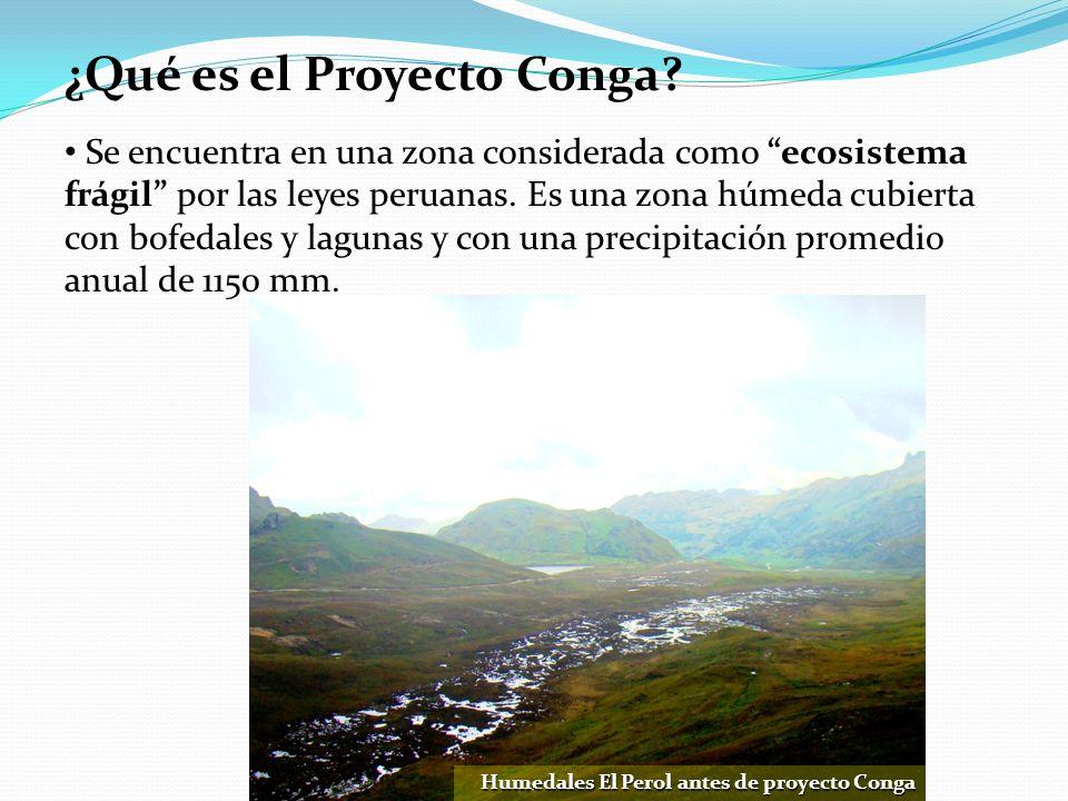 ¿Qué es el Proyecto Conga? Humedales El Perol antes de proyecto Conga Se encuentra en una zona considerada como ecosistema frágil por las leyes peruan