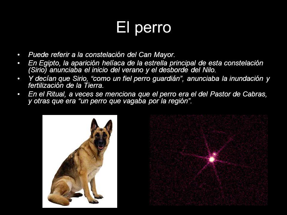 El perro Puede referir a la constelación del Can Mayor. En Egipto, la aparición helíaca de la estrella principal de esta constelación (Sirio) anunciab