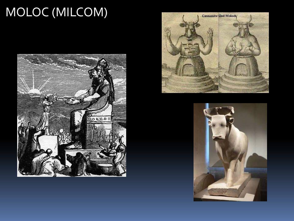 MOLOC (MILCOM)