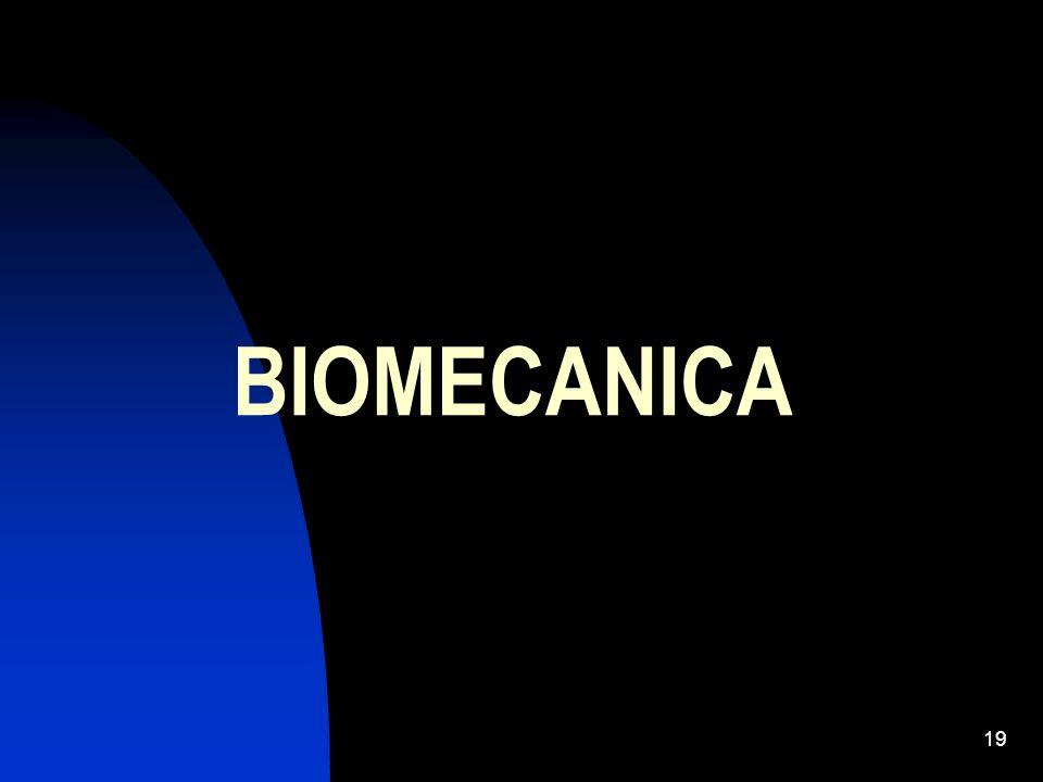 19 BIOMECANICA