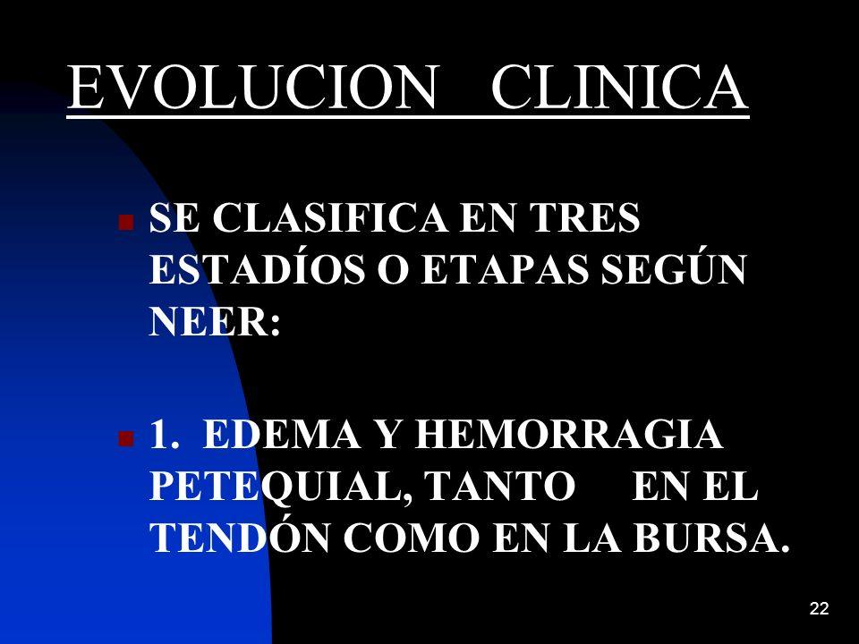 22 EVOLUCION CLINICA SE CLASIFICA EN TRES ESTADÍOS O ETAPAS SEGÚN NEER: 1. EDEMA Y HEMORRAGIA PETEQUIAL, TANTO EN EL TENDÓN COMO EN LA BURSA.
