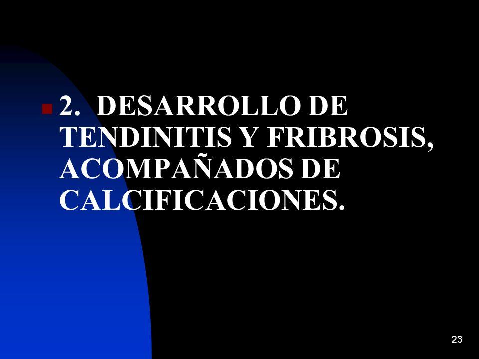 23 2. DESARROLLO DE TENDINITIS Y FRIBROSIS, ACOMPAÑADOS DE CALCIFICACIONES.