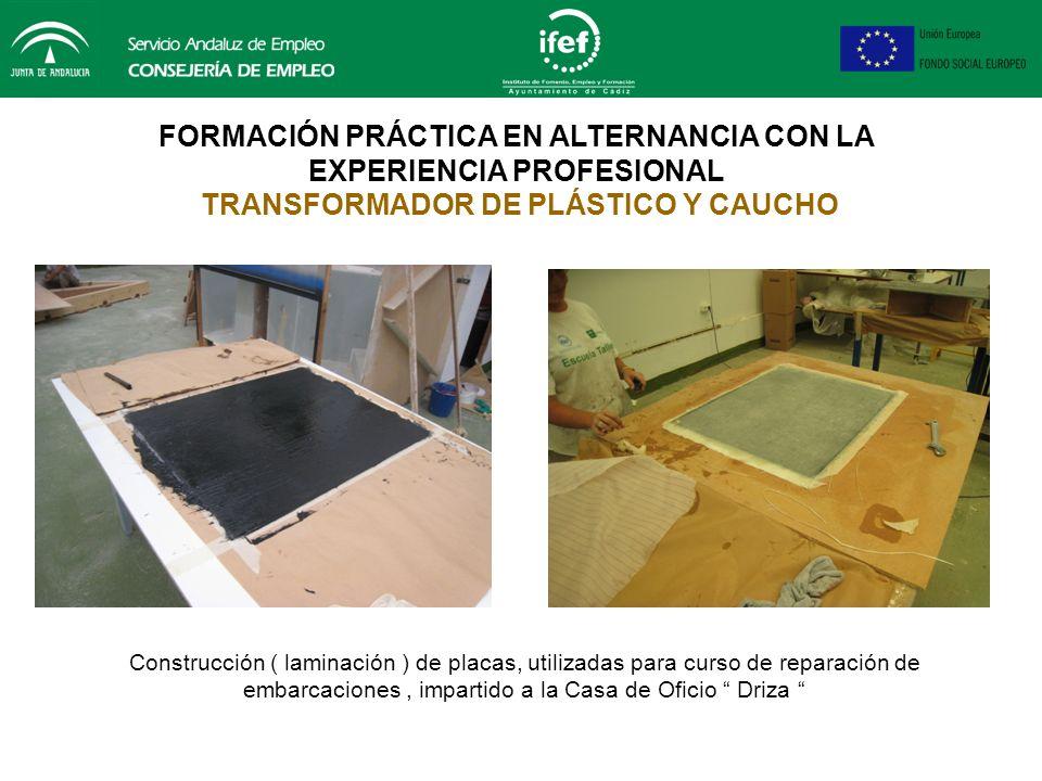 FORMACIÓN PRÁCTICA EN ALTERNANCIA CON LA EXPERIENCIA PROFESIONAL PRÁCTICAS TRANSFORMADOR DE PLÁSTICO Y CAUCHO Diseño y construcción ( laminación ) de