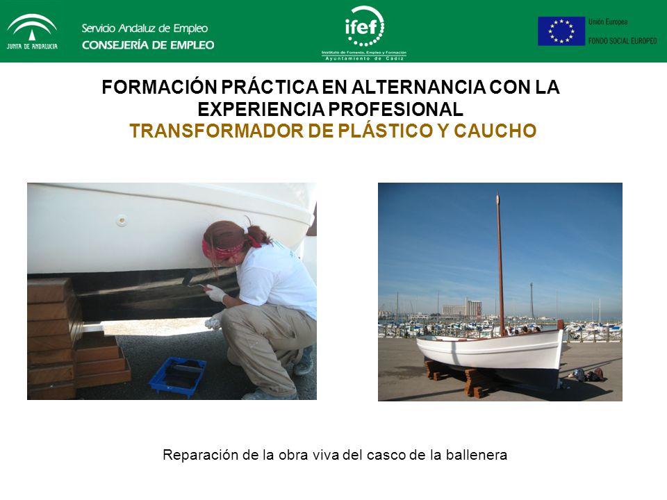 FORMACIÓN PRÁCTICA EN ALTERNANCIA CON LA EXPERIENCIA PROFESIONAL TRANSFORMADOR DE PLÁSTICO Y CAUCHO Construcción ( laminación ) de placas, utilizadas