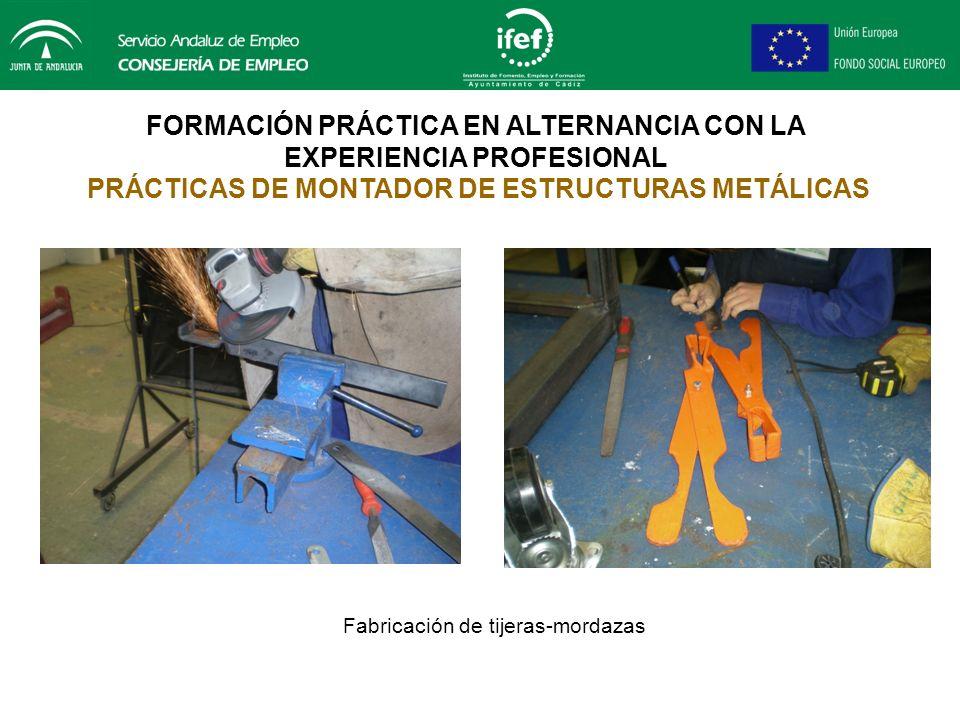 FORMACIÓN PRÁCTICA EN ALTERNANCIA CON LA EXPERIENCIA PROFESIONAL PRÁCTICAS DE MONTADOR DE ESTRUCTURAS METÁLICAS Fabricación de una mesa para oxicorte
