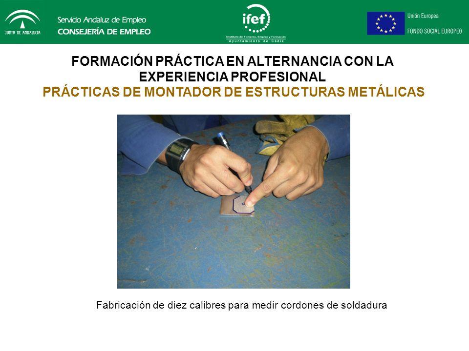 FORMACIÓN PRÁCTICA EN ALTERNANCIA CON LA EXPERIENCIA PROFESIONAL PRÁCTICAS DE MONTADOR DE ESTRUCTURAS METÁLICAS Fabricación de tijeras-mordazas