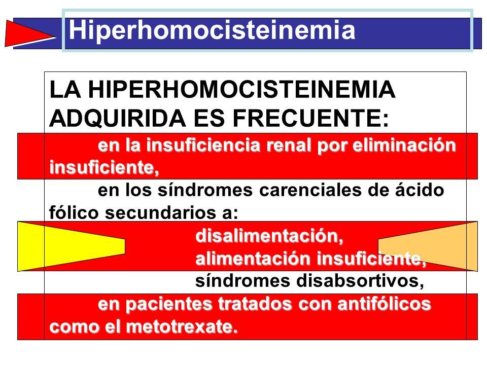 Hiperhomocisteinemia en la insuficiencia renal por eliminación insuficiente, disalimentación, alimentación insuficiente, en pacientes tratados con ant