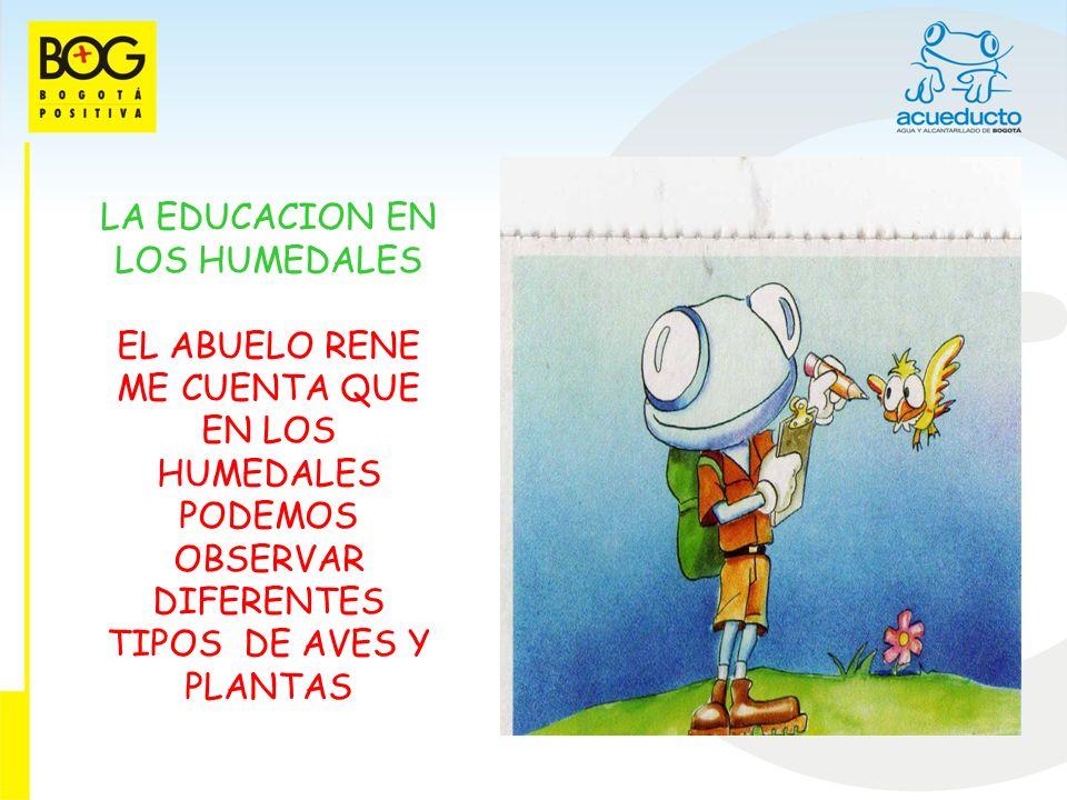 EL AGUA EN NUESTRA CIUDAD OBSERVE UN MAPA DEL ABUELO QUE MOSTRABA EL AGUA NATURAL Y ARTIFICIAL EN LA CIUDAD, Y BOGOTA TIENE MAS DE 100 QUEBRADAS, 13 HUMEDALES Y 3 RIOS PRINCIPALES LOS CUALES LLEGAN AL RIO BOGOTA.