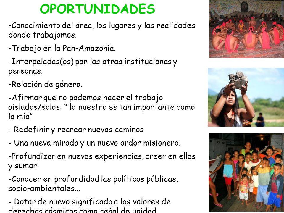 -Conocimiento del área, los lugares y las realidades donde trabajamos. -Trabajo en la Pan-Amazonía. -Interpeladas(os) por las otras instituciones y pe