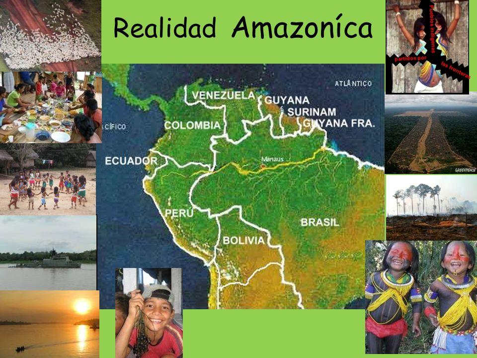 Articulaciones en el tejido social 1.Organizaciones y comunidades indígenas en el Brasil y en los países que el equipo articula:ACITAM, UNIVAJA,CIR, COIAB, COICA etc.
