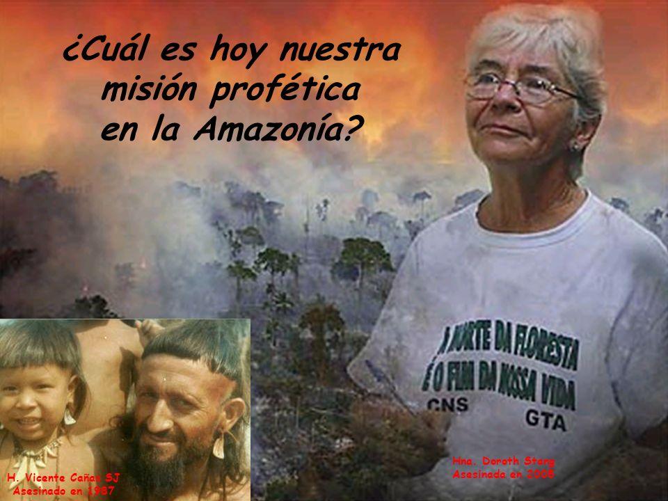 ¿Cuál es hoy nuestra misión profética en la Amazonía? H. Vicente Cañas SJ Asesinado en 1987 Hna. Doroth Stang Asesinada en 2005