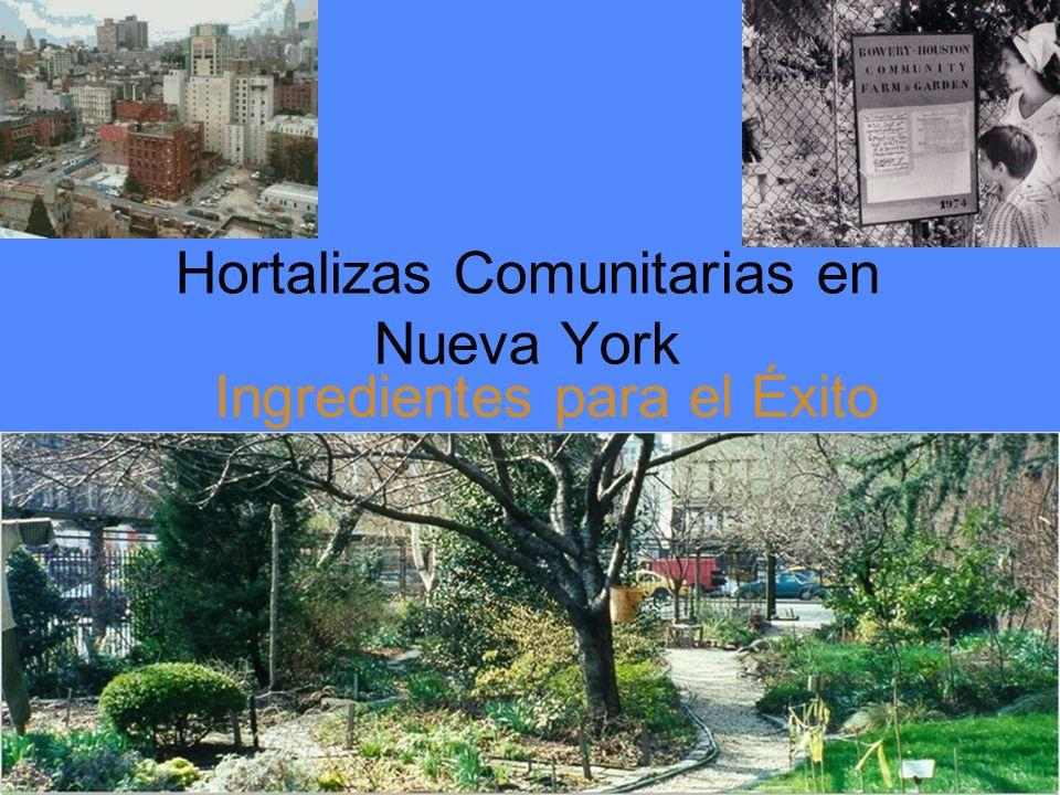 Hortalizas Comunitarias en Nueva York Ingredientes para el Éxito