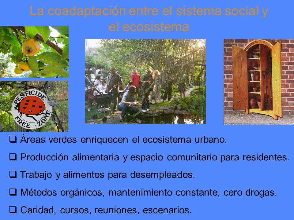 La coadaptación entre el sistema social y el ecosistema Áreas verdes enriquecen el ecosistema urbano.