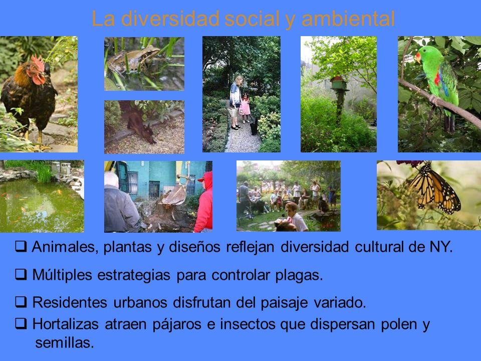 La diversidad social y ambiental Animales, plantas y diseños reflejan diversidad cultural de NY.