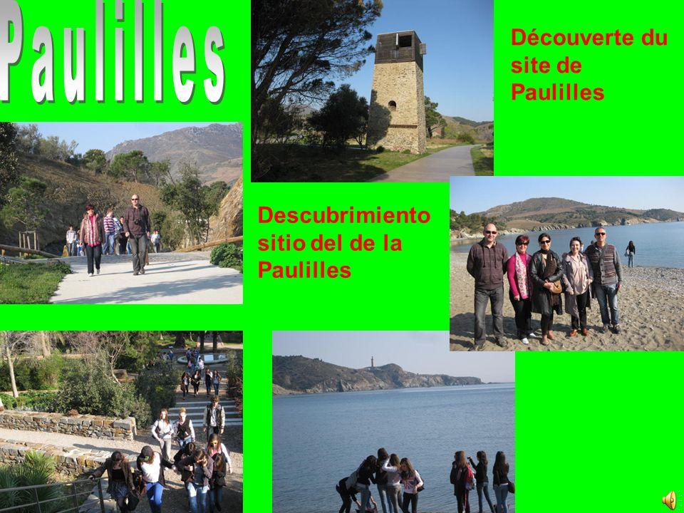 Descubrimiento sitio del de la Paulilles Découverte du site de Paulilles