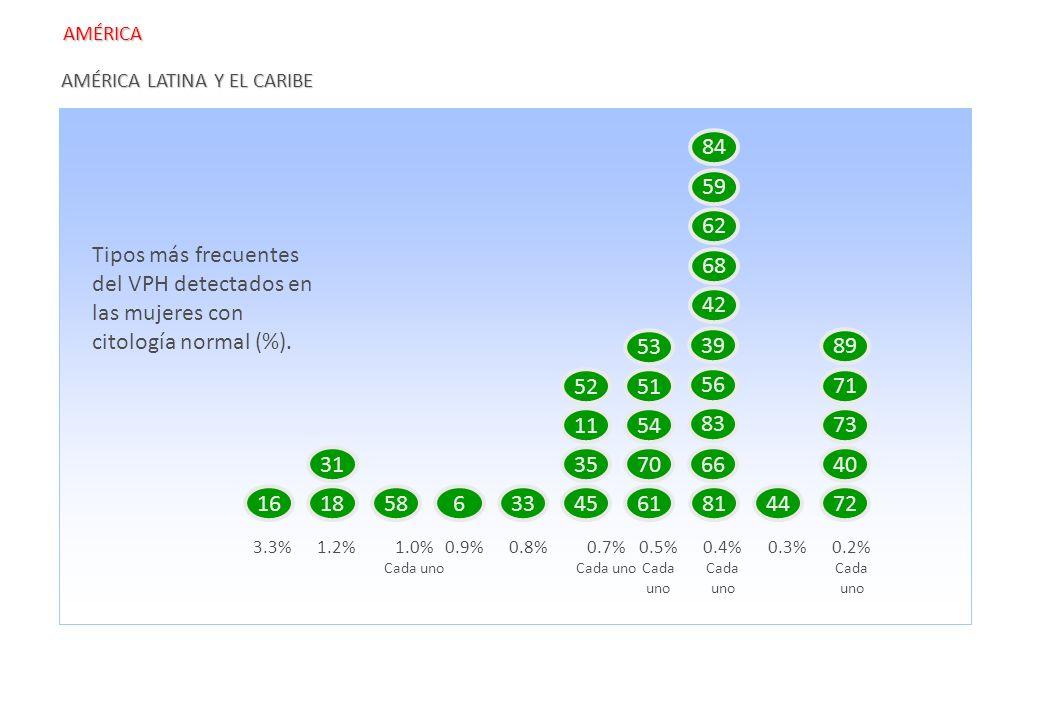 AMÉRICA LATINA Y EL CARIBE 161858633 3.3% 45 31 4 61 70 51 54 81 66 44 1.2%1.0% Cada uno 0.9%0.8%0.7% Cada uno 0.5% Cada uno 0.4% Cada uno 0.3%0.2% Ca