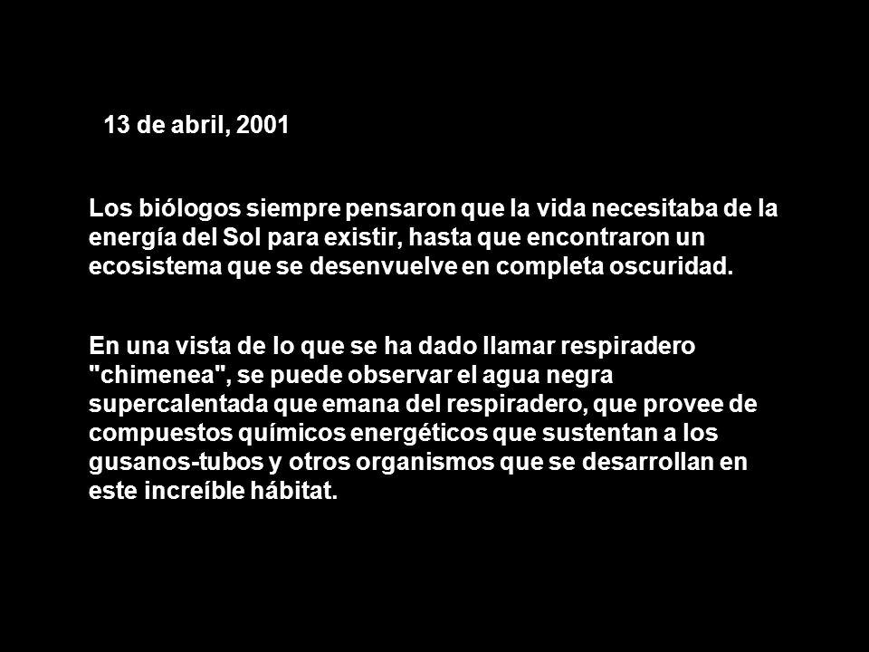 13 de abril, 2001 Los biólogos siempre pensaron que la vida necesitaba de la energía del Sol para existir, hasta que encontraron un ecosistema que se