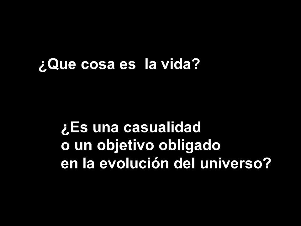 ¿Que cosa es la vida? ¿Es una casualidad o un objetivo obligado en la evolución del universo?