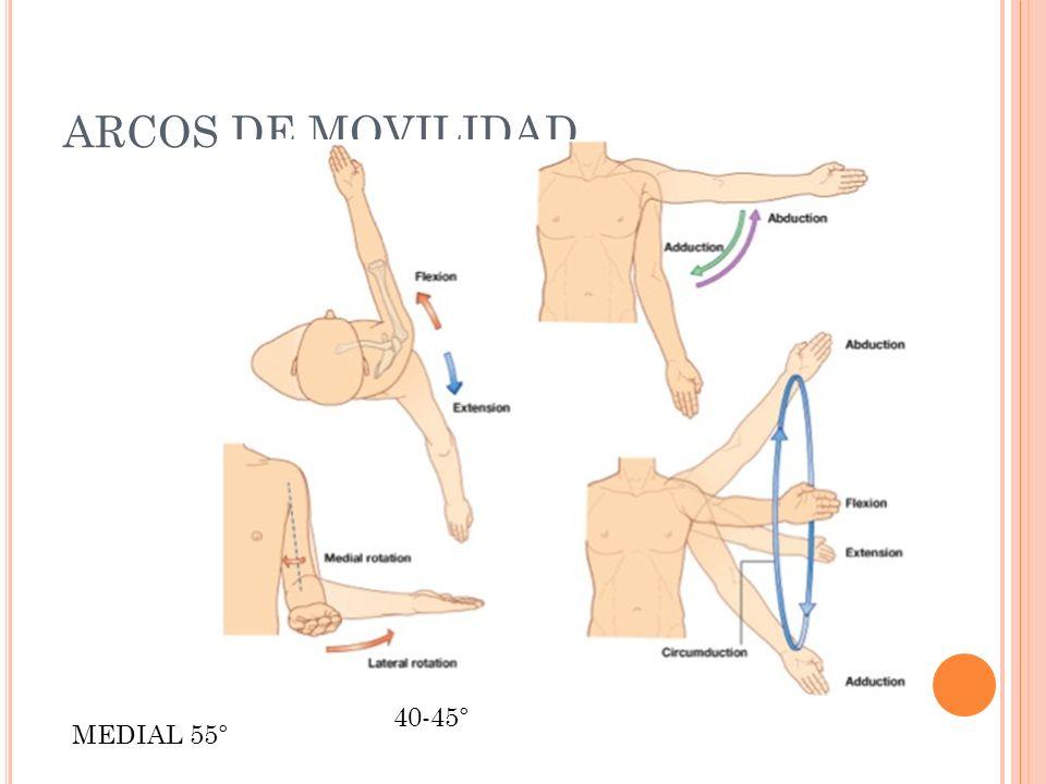ARCOS DE MOVILIDAD 45° 180° 45° 40-45° MEDIAL 55°