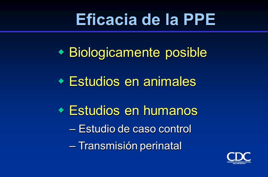Biologicamente posible Estudios en animales Estudios en humanos – Estudio de caso control – Transmisión perinatal Biologicamente posible Estudios en a