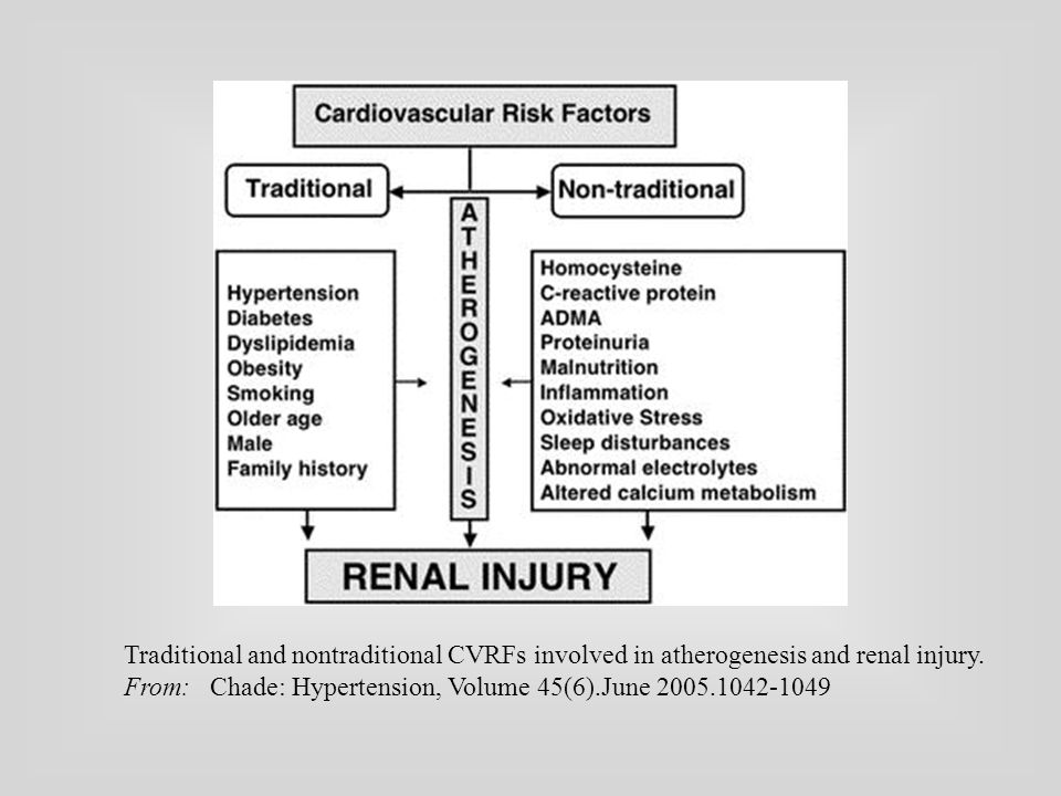Traditional and nontraditional CVRFs involved in atherogenesis and renal injury. From: Chade: Hypertension, Volume 45(6).June 2005.1042-1049