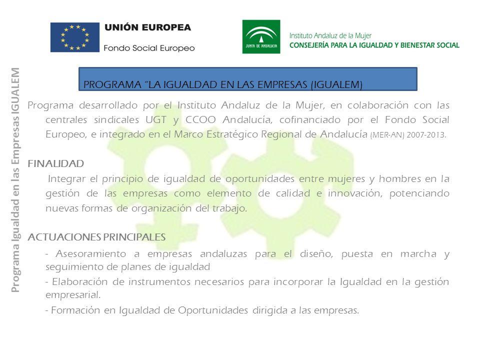 Programa Igualdad en las Empresas IGUALEM PROGRAMA LA IGUALDAD EN LAS EMPRESAS (IGUALEM) Programa desarrollado por el Instituto Andaluz de la Mujer, e