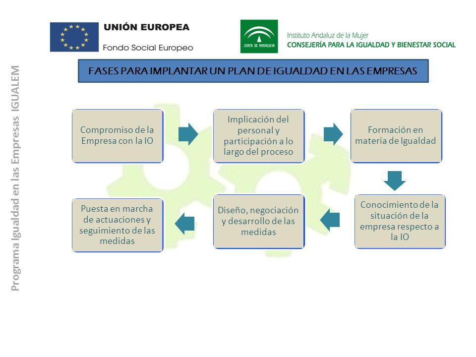 Programa Igualdad en las Empresas IGUALEM Compromiso de la Empresa con la IO Implicación del personal y participación a lo largo del proceso Formación