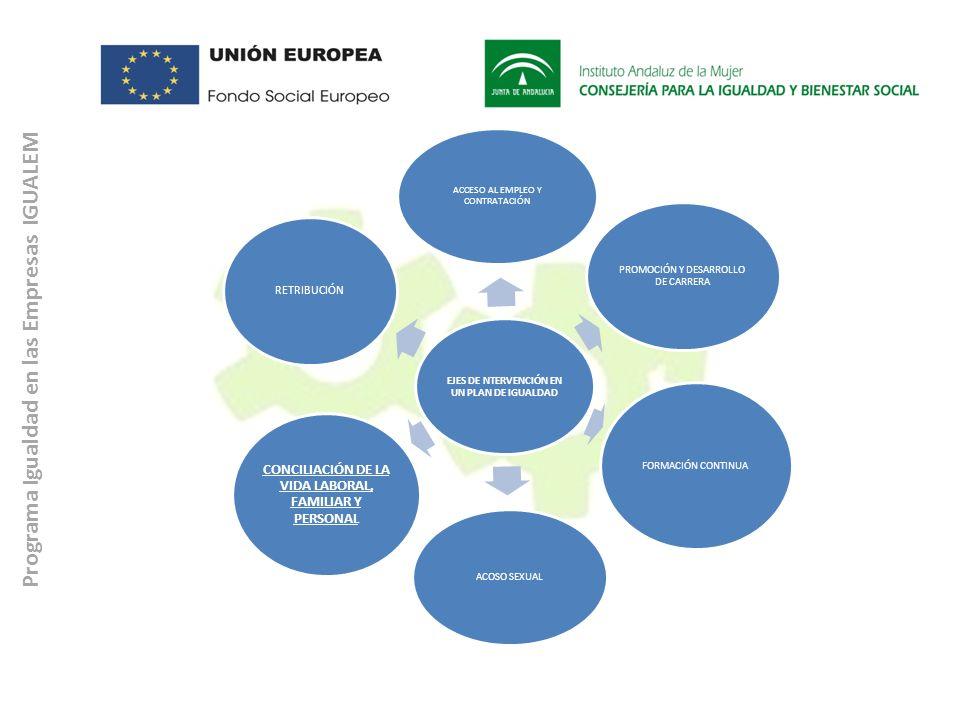 Programa Igualdad en las Empresas IGUALEM EJES DE NTERVENCIÓN EN UN PLAN DE IGUALDAD ACCESO AL EMPLEO Y CONTRATACIÓN PROMOCIÓN Y DESARROLLO DE CARRERA