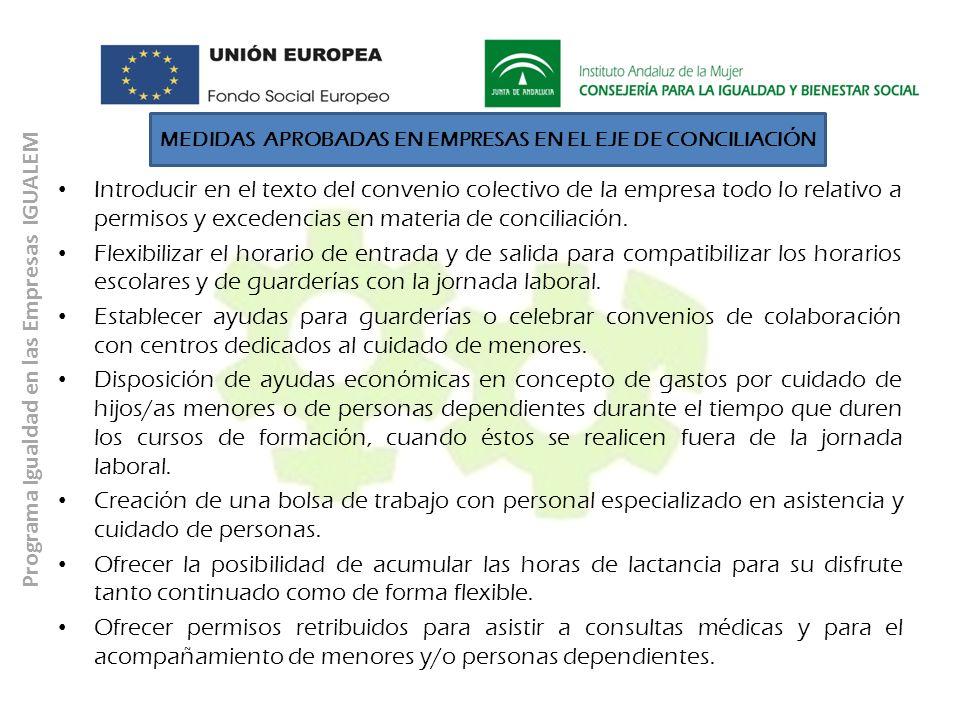 Programa Igualdad en las Empresas IGUALEM Introducir en el texto del convenio colectivo de la empresa todo lo relativo a permisos y excedencias en mat