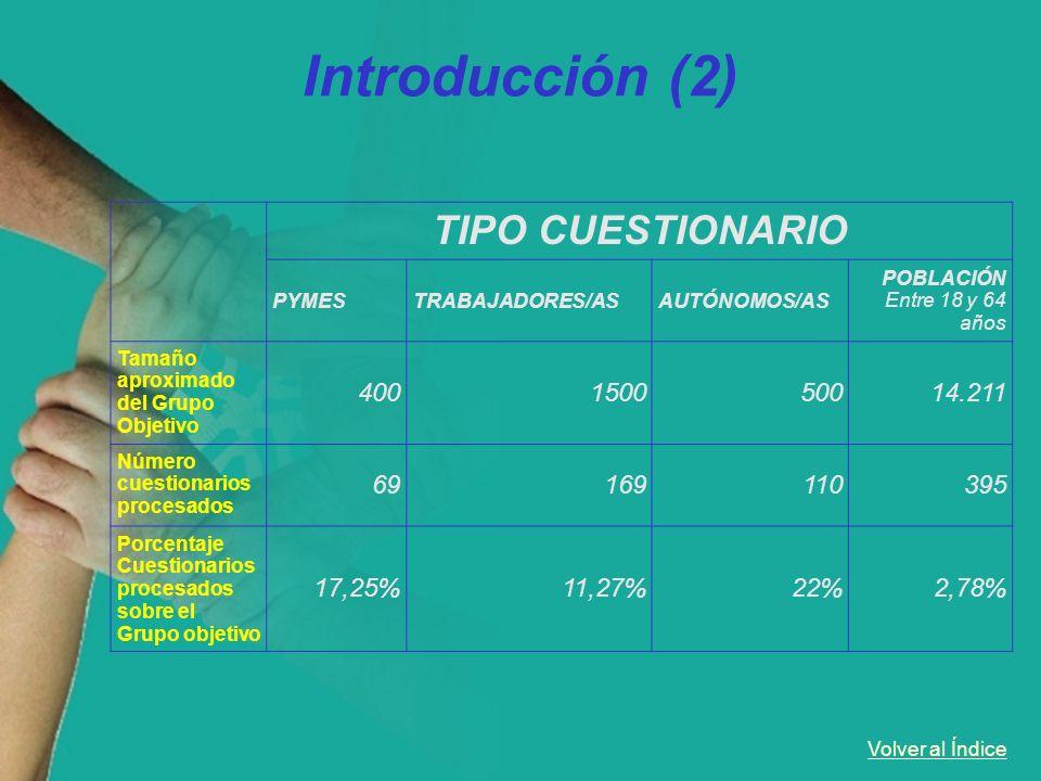 Volver al Índice Introducción (2) TIPO CUESTIONARIO PYMESTRABAJADORES/ASAUTÓNOMOS/AS POBLACIÓN Entre 18 y 64 años Tamaño aproximado del Grupo Objetivo