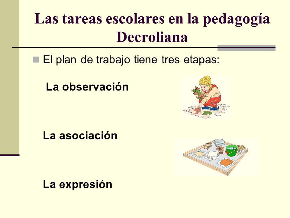 Las tareas escolares en la pedagogía Decroliana El plan de trabajo tiene tres etapas: La observación La asociación La expresión