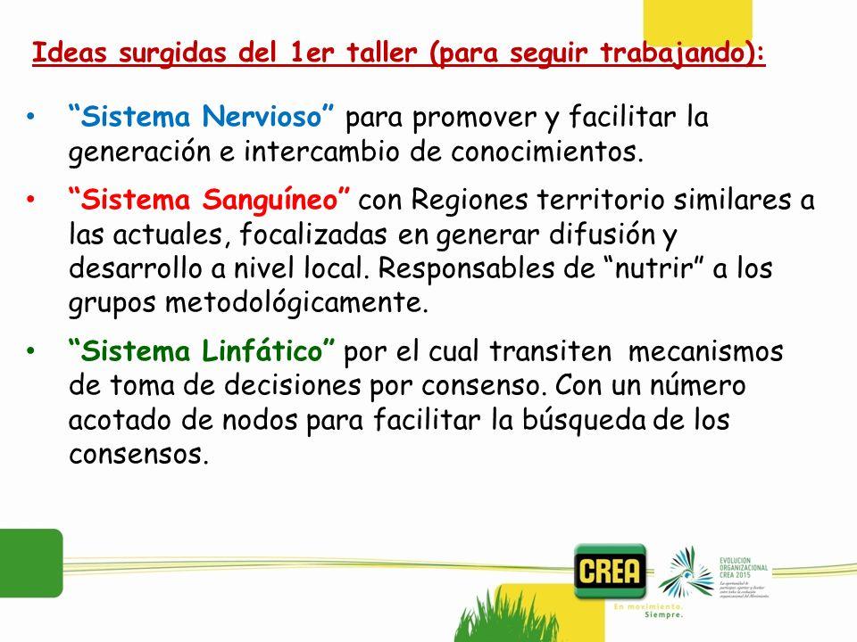 Sistema Nervioso para promover y facilitar la generación e intercambio de conocimientos. Sistema Sanguíneo con Regiones territorio similares a las act
