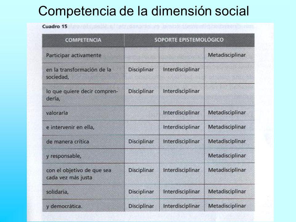 Competencia de la dimensión social