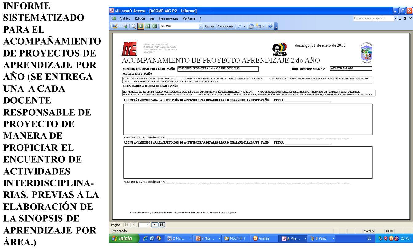 INFORME SISTEMATIZADO PARA EL ACOMPAÑAMIENTO DE PROYECTOS DE APRENDIZAJE POR AÑO (SE ENTREGA UNA A CADA DOCENTE RESPONSABLE DE PROYECTO DE MANERA DE P