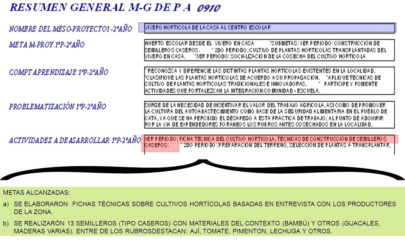METAS ALCANZADAS: a)SE ELABORARON FICHAS TÉCNICAS SOBRE CULTIVOS HORTÍCOLAS BASADAS EN ENTREVISTA CON LOS PRODUCTORES DE LA ZONA. b)SE REALIZARÓN 13 S
